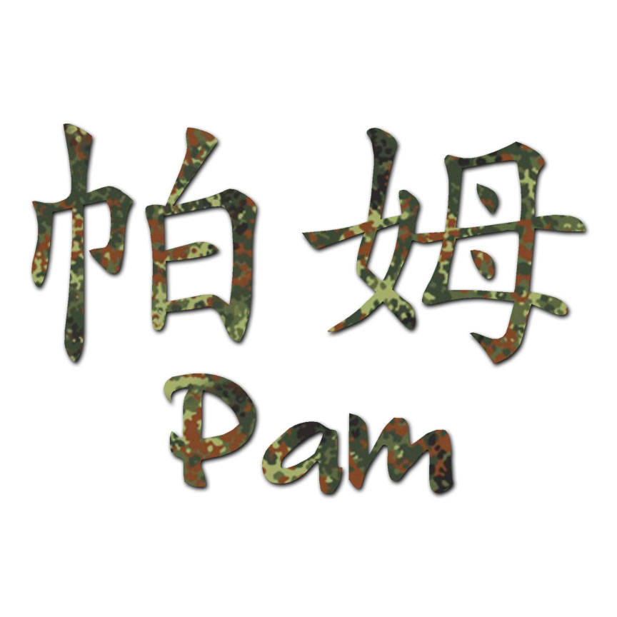 Chinese Symbol Pam Name Decal Sticker Multiple Patterns Sizes