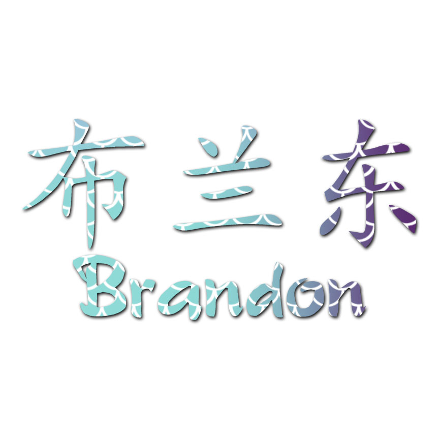 Chinese Symbol Brandon Name Decal Sticker Multiple Patterns