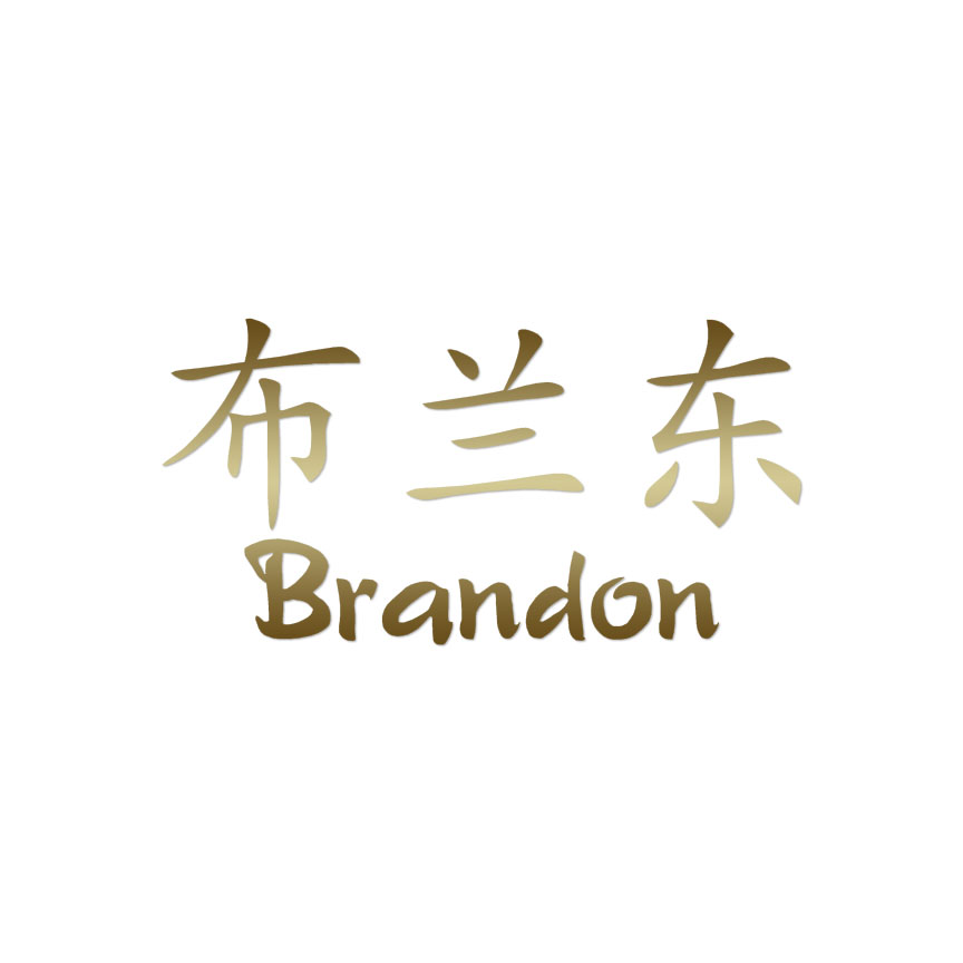 Chinese Symbol Brandon Name Decal Sticker Multiple Colors