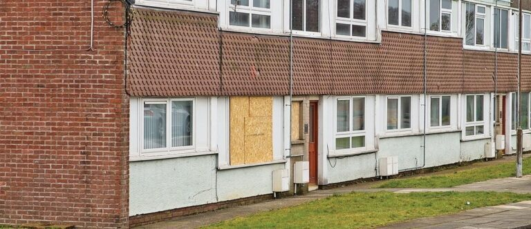 Thugs wield hatchets in pensioner attack