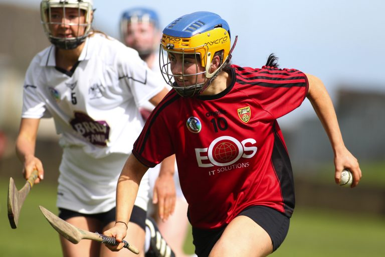 Down camogs find it tough against Kildare in Shield final