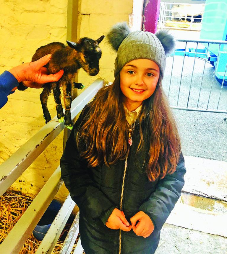 Kid delivers kid:Little Macey helps save newborn goat