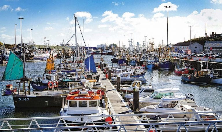 Fishing industry faced with reduced quotas for several stocks in 2020