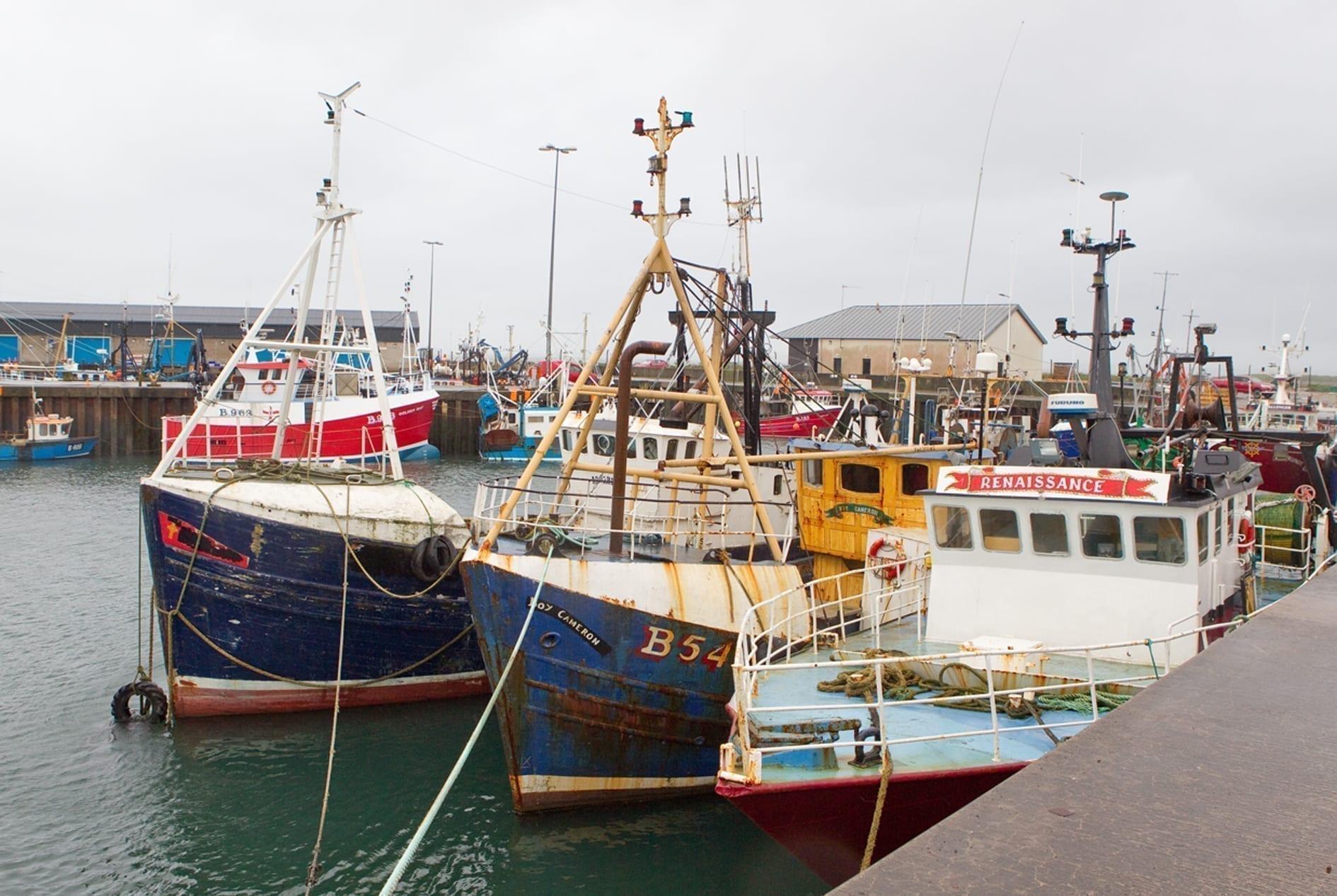 Portavogie Harbour revamp scrapped