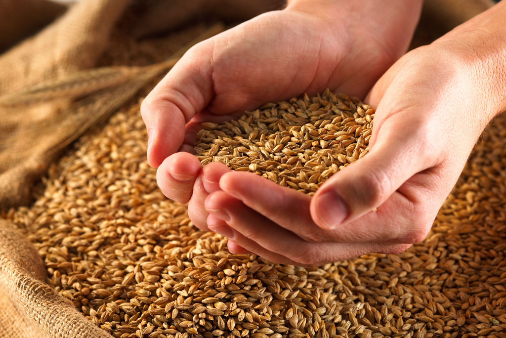 Why You Should Be Eating Ancient Grains - Spirituality ...