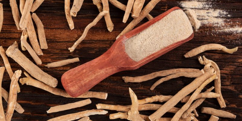 Ashwagandha root, used in herbal medicine and ayurveda for anxiety and other issues
