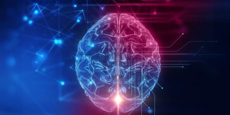 Red and Blue computer illustration of brain