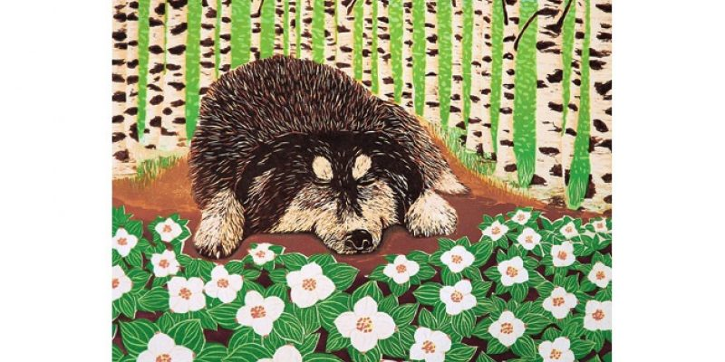 Illustration of dog and birch trees