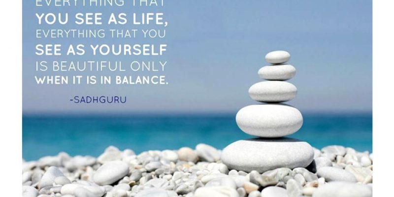 Sadhguru quote with balanced stones and ocean