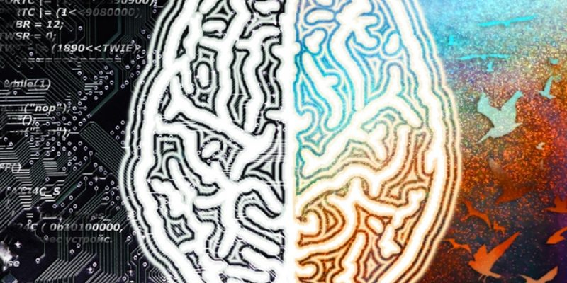 Left Brain and Right Brain illustration