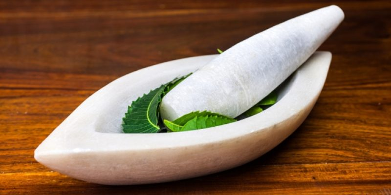 Neem with stone pestle and mortar