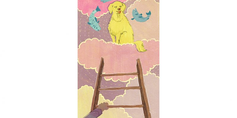 Illustration of dog and fish in clouds