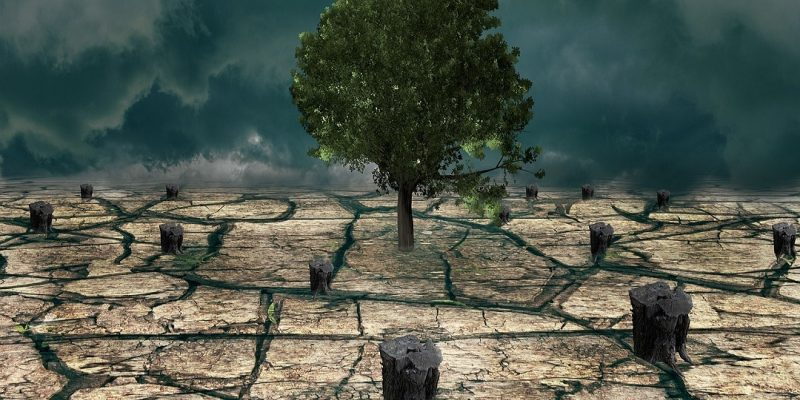 A dessicated earth