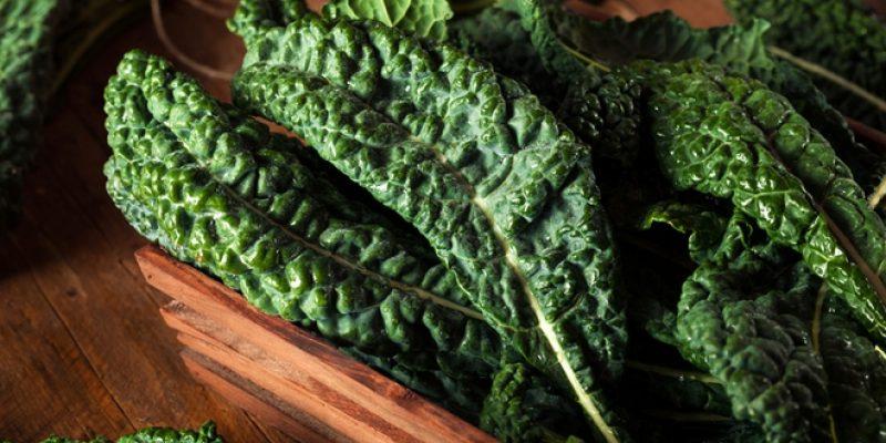 Nutrient Dense Lacinto Kale leaves