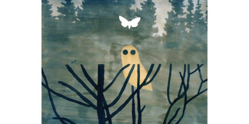 Illustration of owl and butterfly in woods