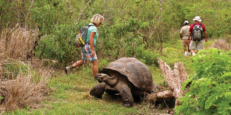 REI Adventures in the Galapagos Islands