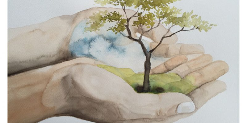 Watercolor of tree in cupped hands