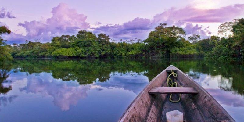Amazon River, illustrating a story on healthy aging secrets from the Amazon's Tsimane people.