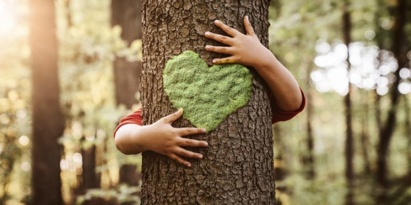 arms hugging tree with heart on it