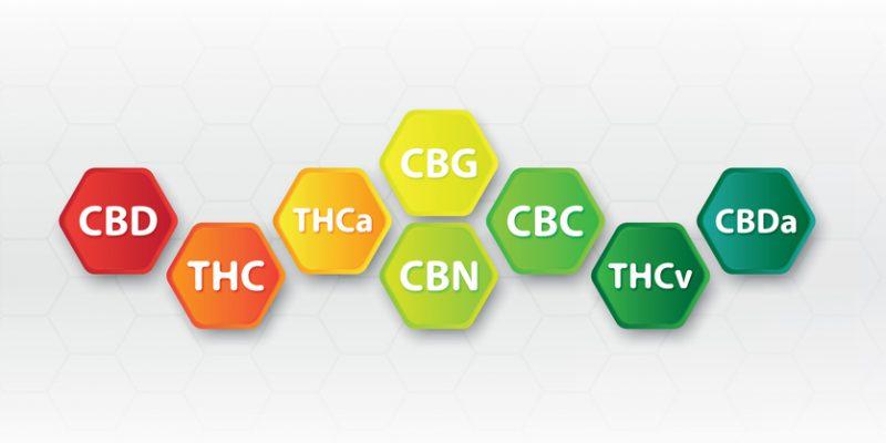 Cannabinoids emerging beyond CBD (CBN, CBC, CBG)