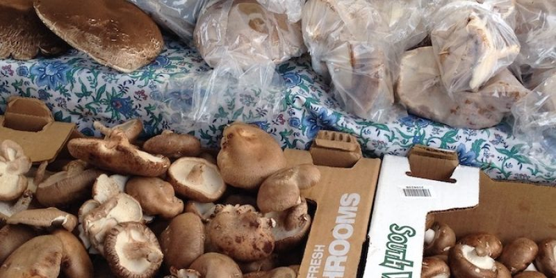 Mushrooms at a farmers market