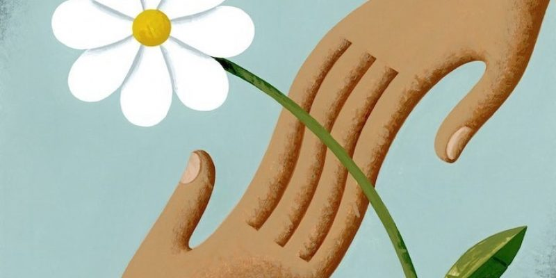 hands reaching for flower illustration In defense of kindness Bruce Reyes-Chow