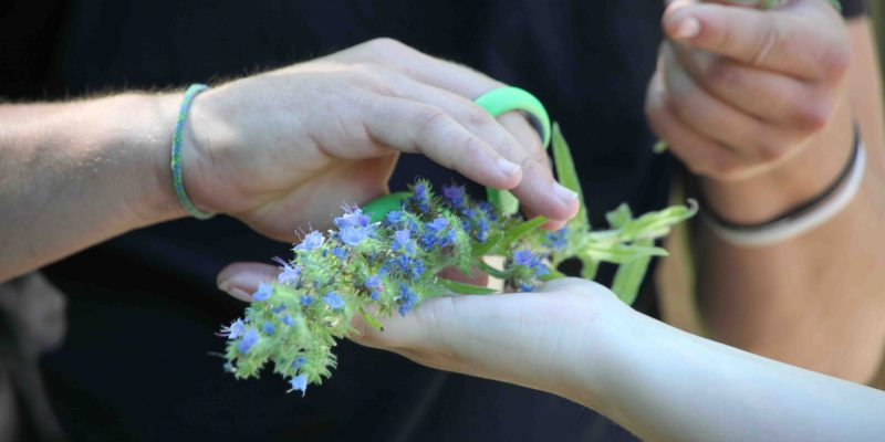 iBme good enough parent hands and flowers