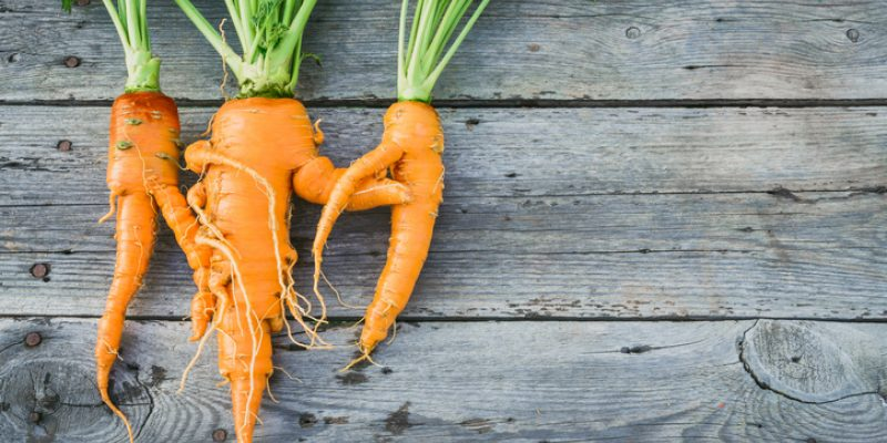 Imperfect carrots produce that is imperfect