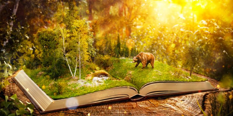 open book with forest for sacred writing practice journaling