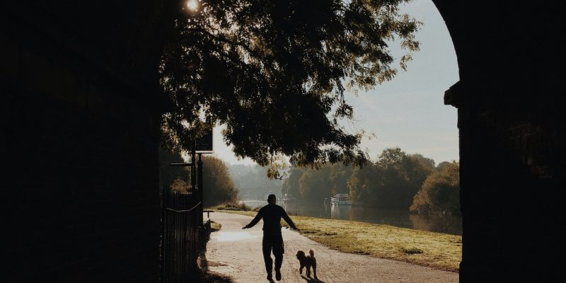 Silhouette of person walking their dog through a dark tunnel into light