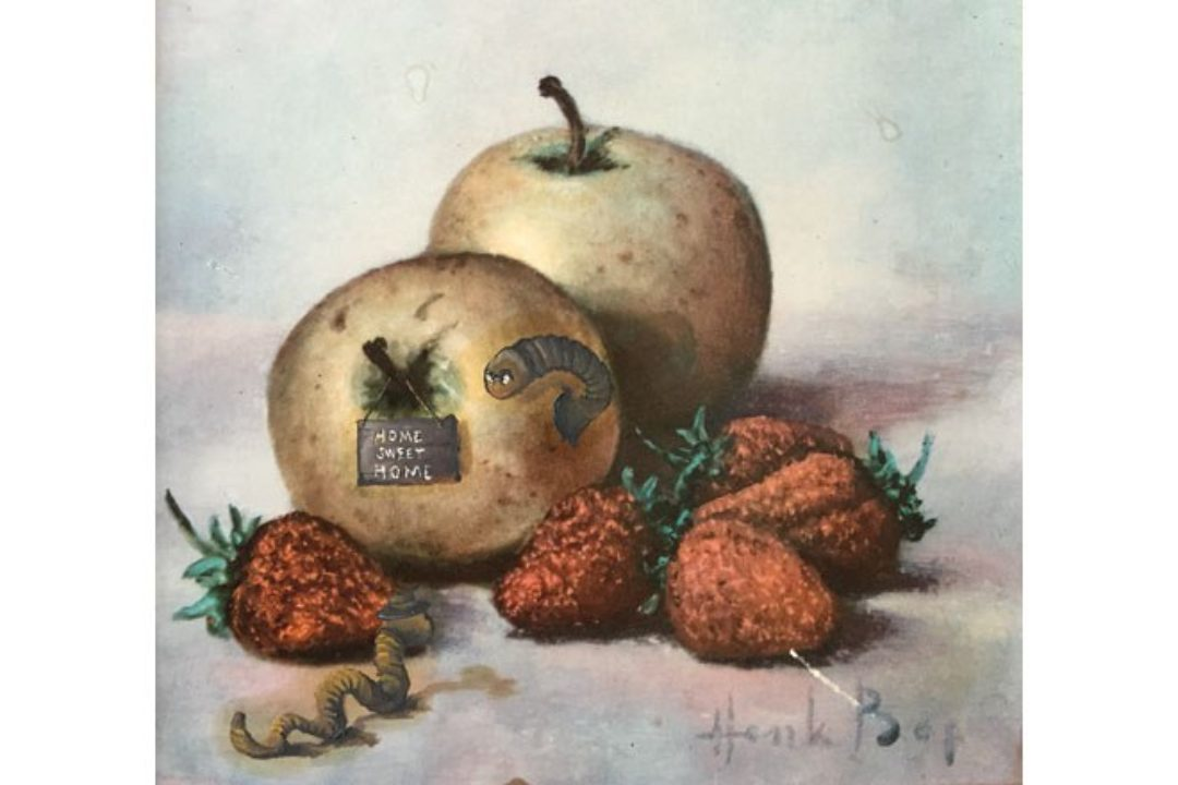 illustration of apples and worms