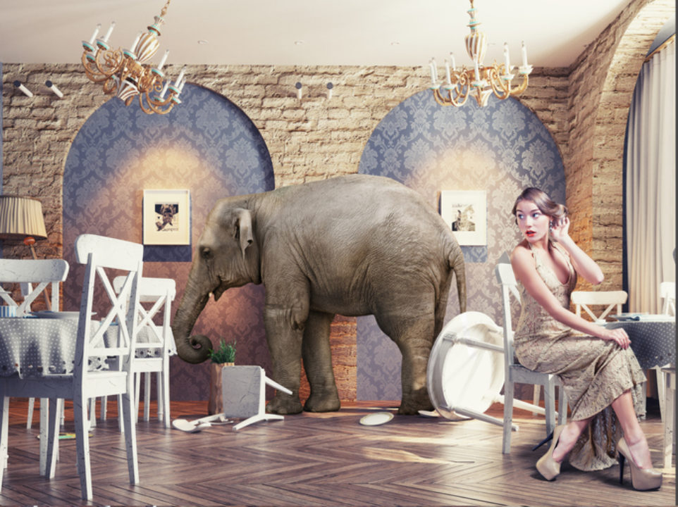 Elephant in restaurant knocking over chairs and dishes while a woman dining looks on