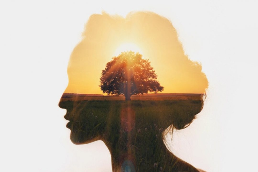 Silhouette of woman with image of tree and sunset inside, an internal journey
