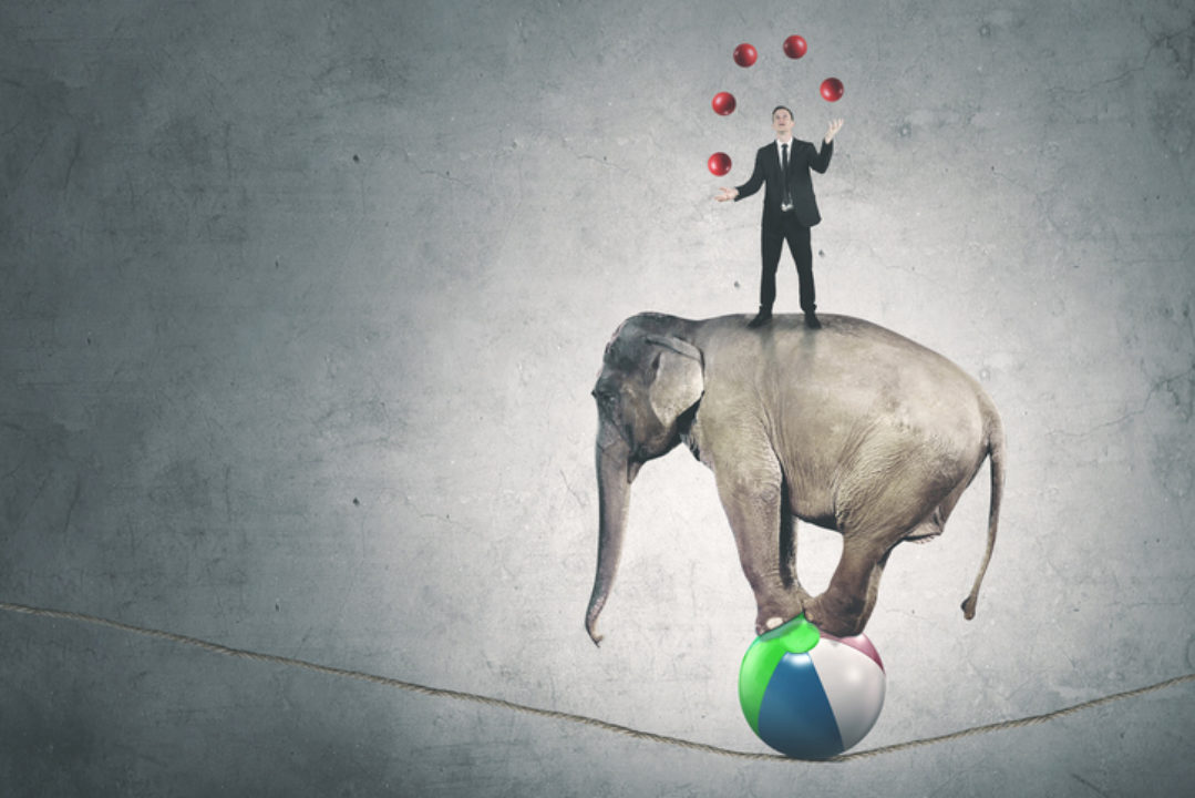 """<img src=""""jugging on a tightrope.jpg"""" alt=""""man juggling balls on top of elephant balancing on a ball on a tightrope""""/>"""