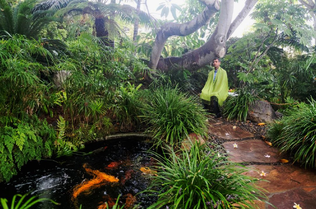 person meditating in a lush garden