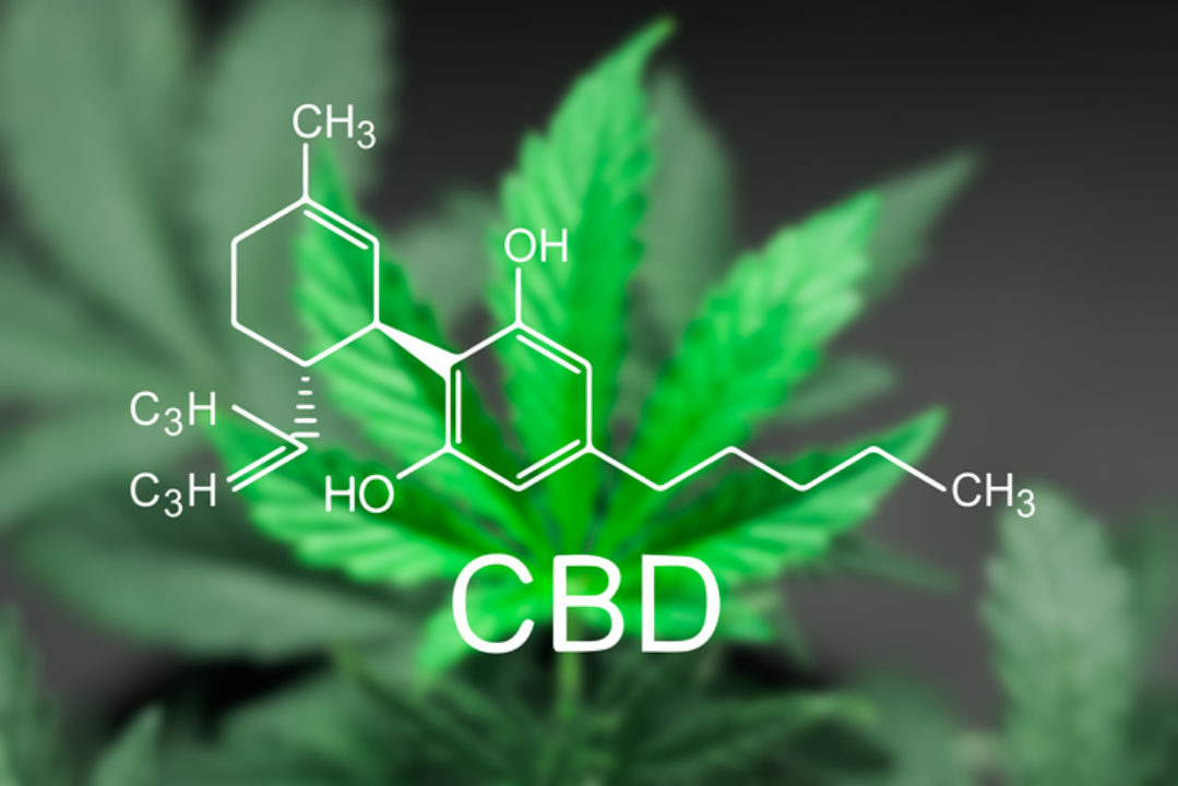 CBD leaves and molecular structure
