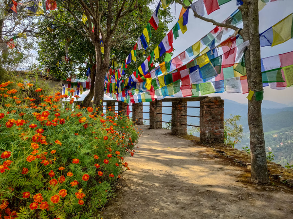 Garden with prayer flags