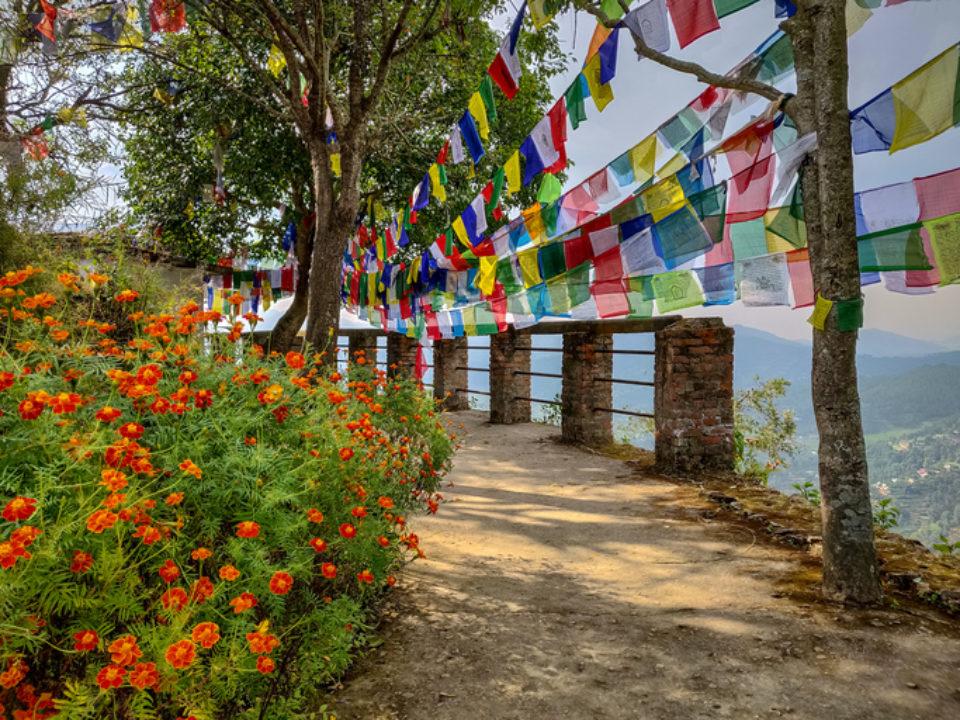 Garden with prayer flags