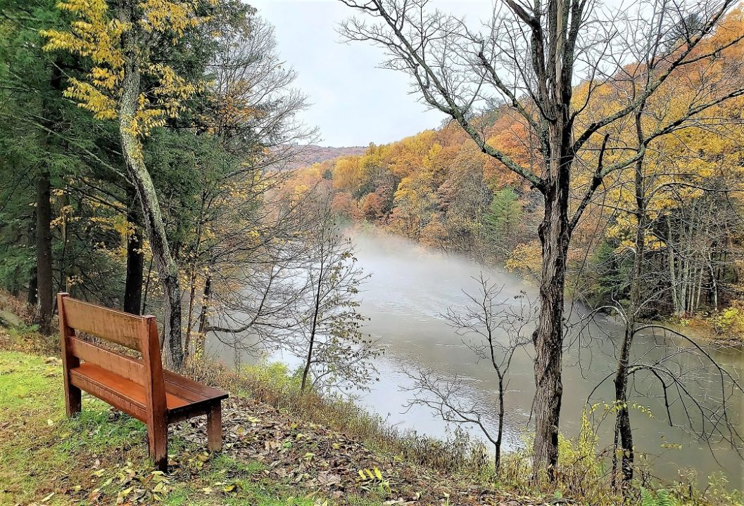 Bench by a river, in fall