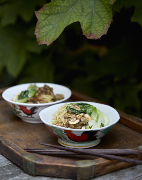noodles and chicken, in two soup bowls with chopsticks