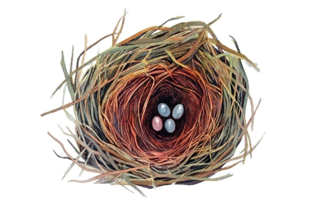 <em>Edit Article</em> 3 Practices for Calm Investing