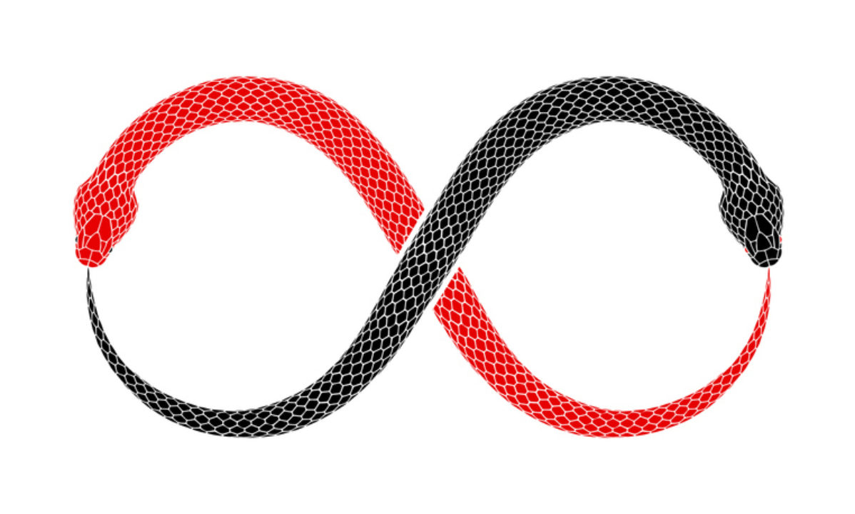 a red snake and a black snake intertwined