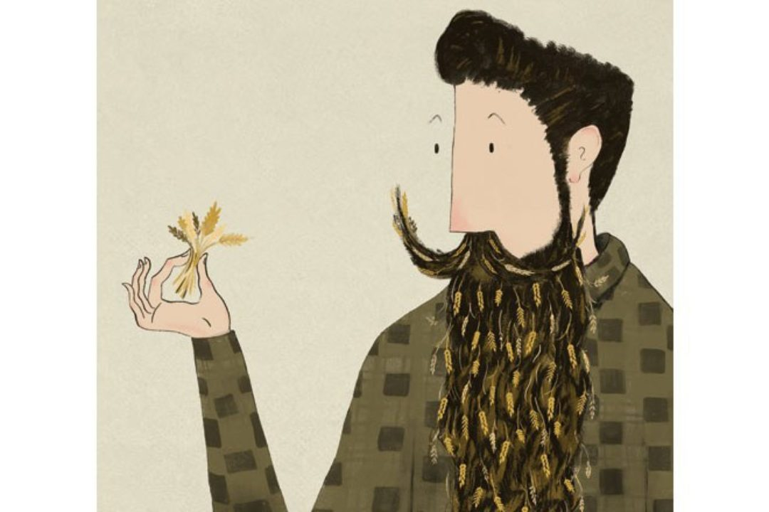 Illustration of man with beard made from wheat