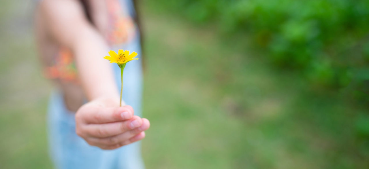 Child gives yellow flower