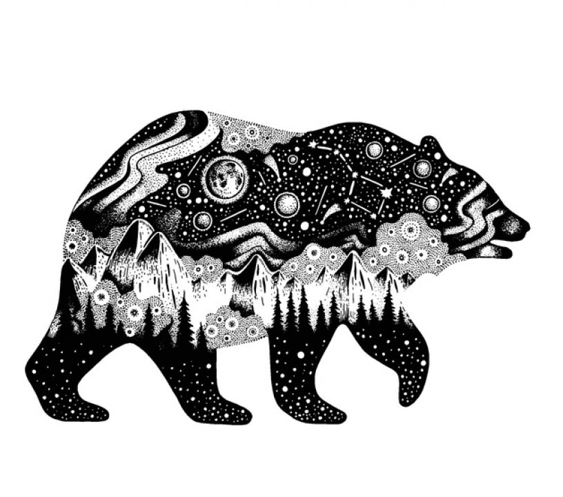 Illustration of animal sign bear with the night sky inside it