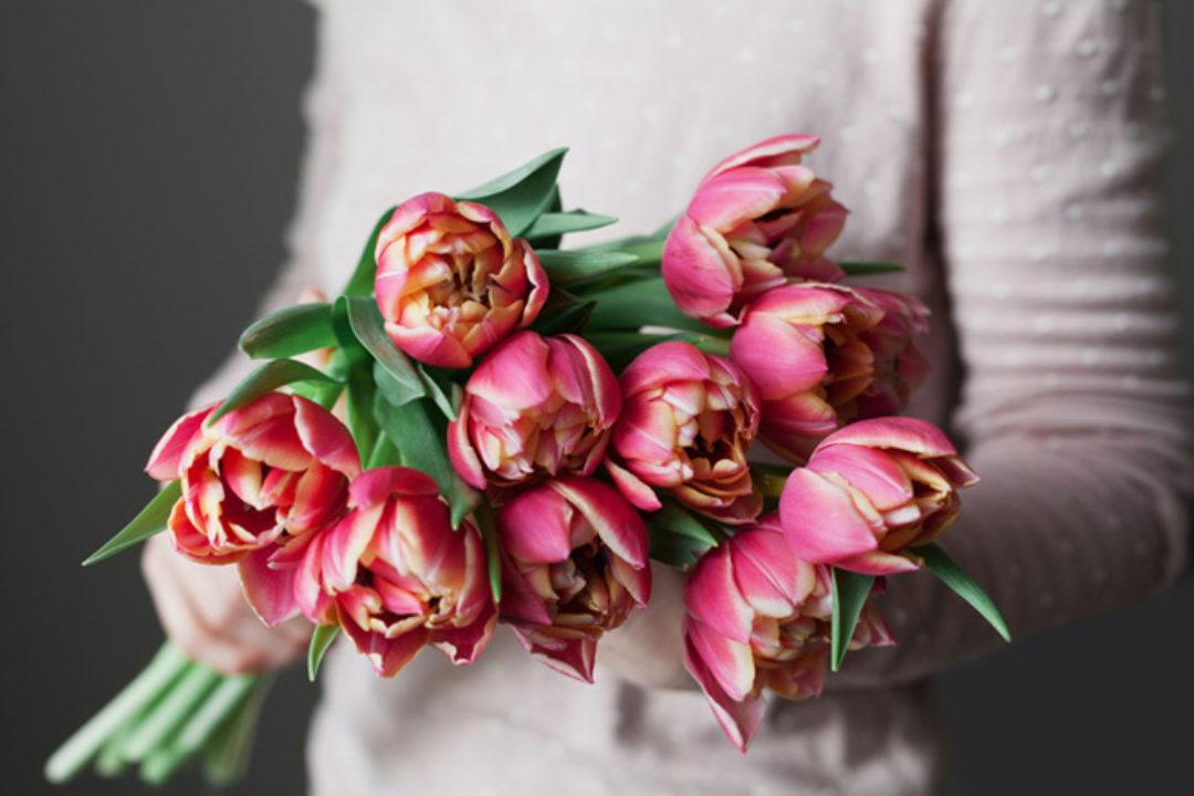 beautiful bouquet of tulips