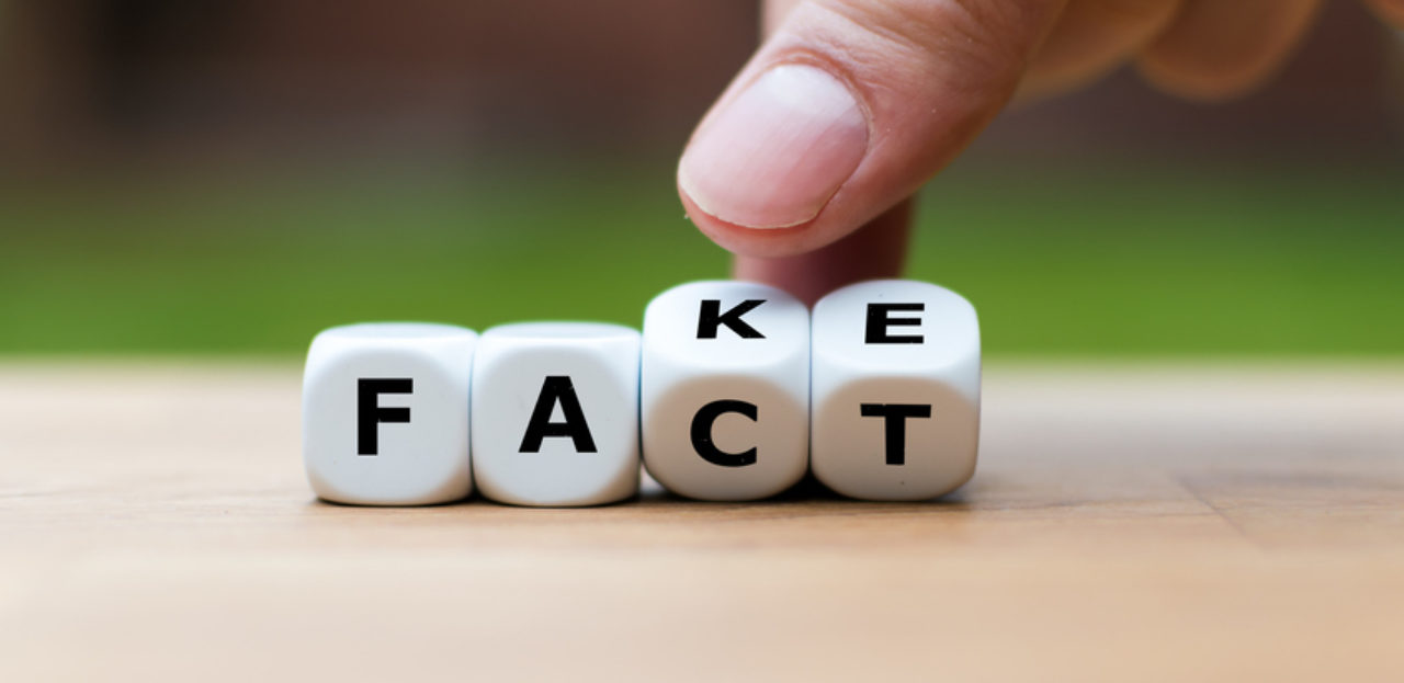 An image of cubes spelling fact and fake