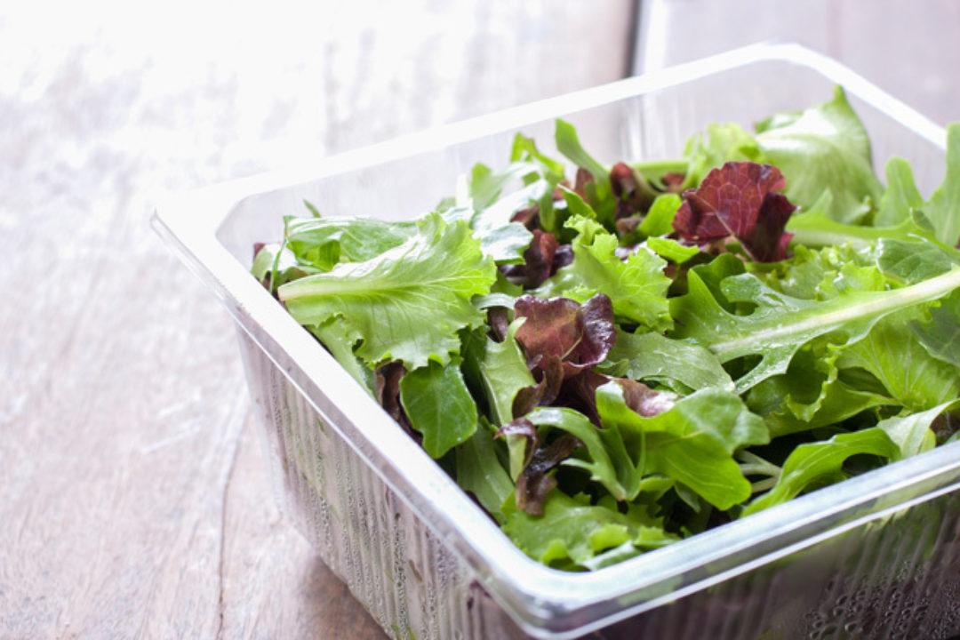 salad in plastic container