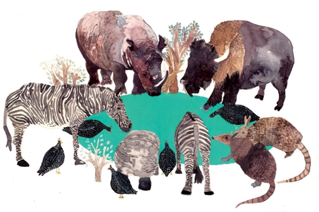Illustration of animals around watering hold