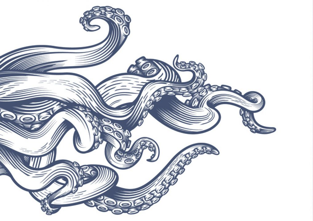 ink drawing of tentacles toe represent what is animism